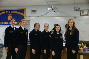 Sullivan FFA Officer Elected to Section Office